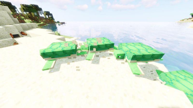 How to Get a Turtle Shell in Minecraft